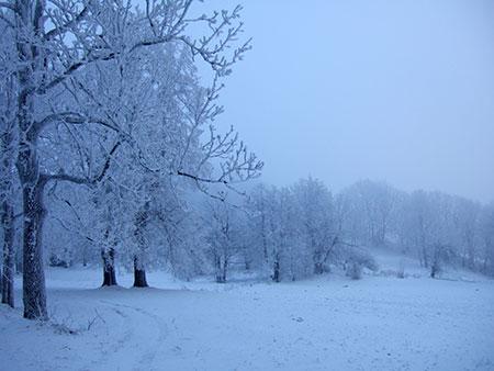 Schnee bei Kytlice