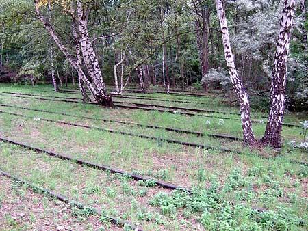 Schöneberger Südgelände: Gleise