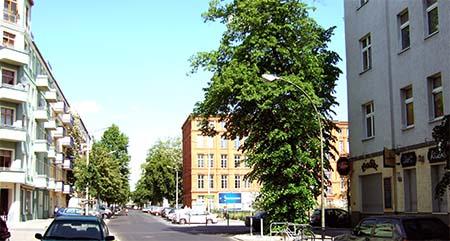 Fluchttunnel: Elsen-/Heidelberger Straße