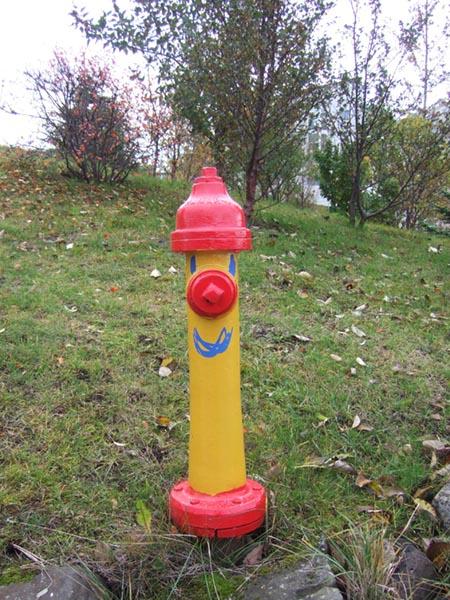 Island: Hydrant